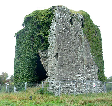 Ballyfinboy Castle in Co. Tipperary, Ireland - For sale at €75,000 - www.castlesandmanorhouses.com