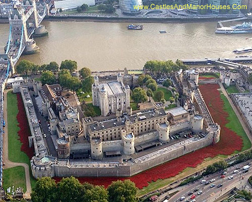 Ceramic poppies at the Tower of London, 2014 - www.castlesandmanorhouses.com