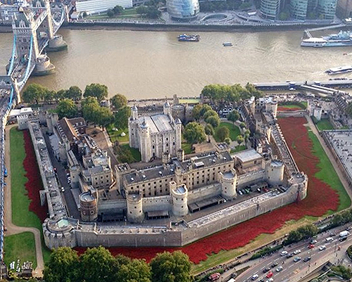 Ceramic poppies at the Tower of London, 2014. - www.castlesandmanorhouses.com